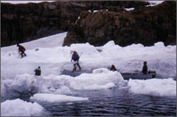 arctic-studies-bowdoin-college