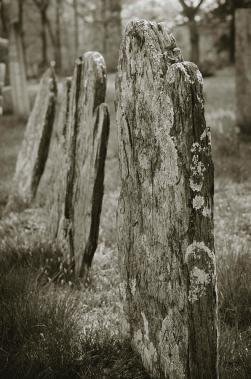 old-gravestones-i-dave-gordon
